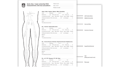 pad assessment tool download (.pdf) file