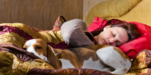Is fido making it hard to sleep?