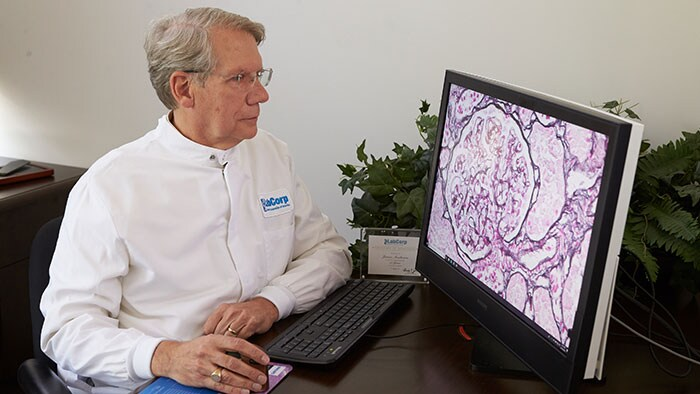Download image (.jpg) LabCorp pathologist uses Philips Intellisite (opens in a new window)